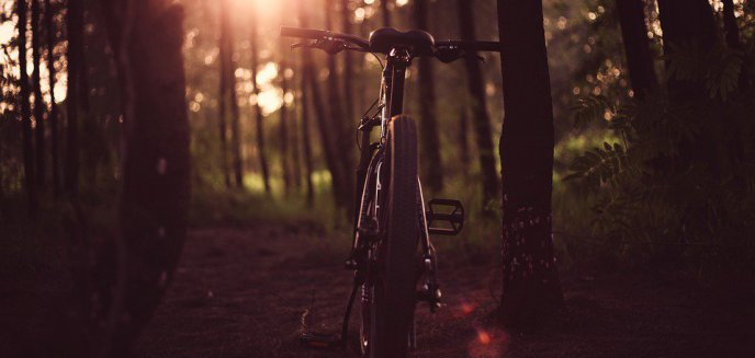Artykuł: Ukradł rower na Bałtyckiej i uciekał przez las miejski. Tam czekali już policjanci