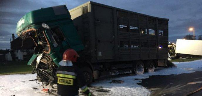 Zderzenie ciężarówek. Droga Ostróda-Olsztyn wciąż zablokowana