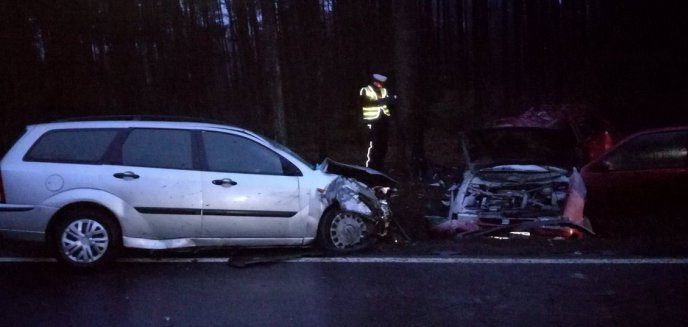Artykuł: Tragiczny wypadek pod Olsztynem. Dwie osoby nie żyją [ZDJĘCIA]