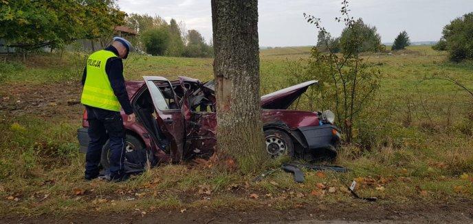Artykuł: Samochód uderzył w drzewo. Nie żyje pasażer [ZDJĘCIA]