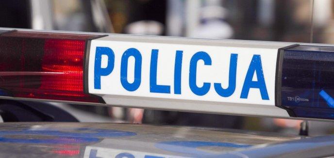 Artykuł: Policjanci poszukują świadków śmiertelnego potrącenia pieszego