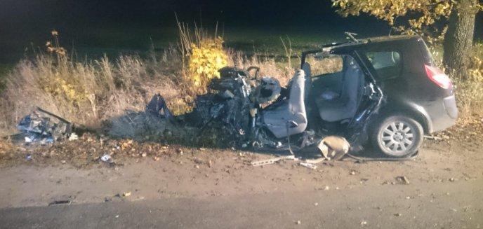 Artykuł: Samochodem uderzył w drzewo. Kierowca zginął na miejscu [ZDJĘCIA]