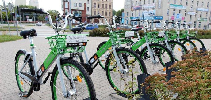 Artykuł: Więcej pieniędzy na rower miejski. Radni PO obiecali to w kampanii