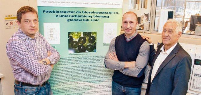 Artykuł: Kortowskie fermy tlenowe: Wynalazek olsztyńskich naukowców ratunkiem dla świata?