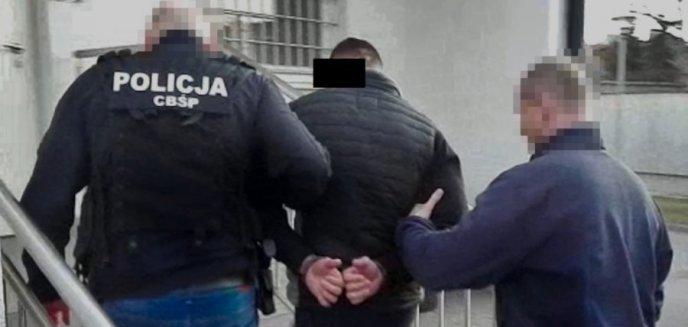 Artykuł: Gang narkotykowy rozbity. W akcji CBŚP brali udział m.in. funkcjonariusze z Olsztyna