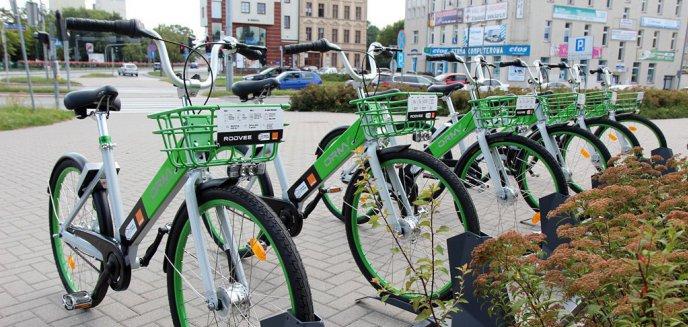 Artykuł: Olsztyńskim Rowerem Miejskim pojedziemy już w majówkę