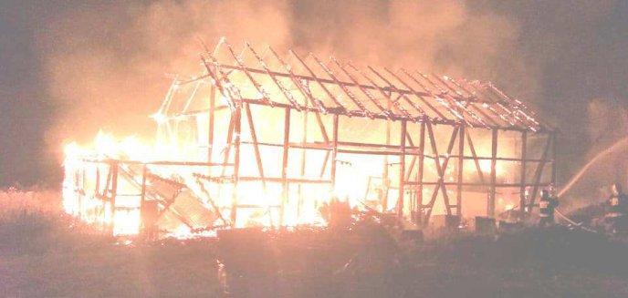 Niewyjaśnione przyczyny pożarów w Sętalu. Mieszkańcy wyznaczyli wysoką nagrodę za złapanie podpalacza