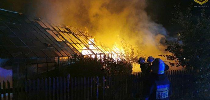 Artykuł: W nocy pod Olsztynem spłonęła szklarnia [ZDJĘCIA]