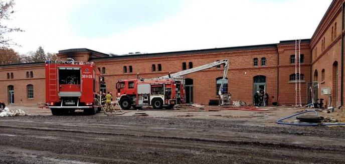 Trzy tygodnie po pożarze Banku Żywności. Czy wiadomo coś więcej?