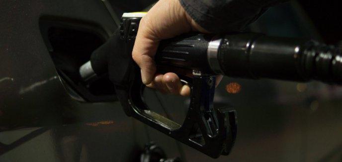 Artykuł: 5,31 zł za diesla? Ceny paliw w Olsztynie osiągnęły szczyt