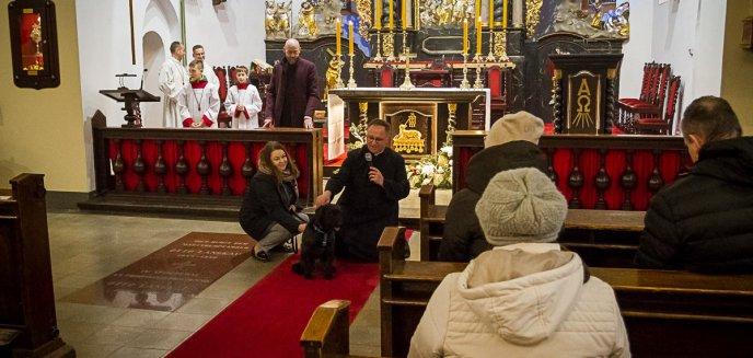 Artykuł: TYLKO U NAS! Piękny gest duchownego: podczas mszy zachęcał do adopcji psów [ZDJĘCIA, WIDEO]