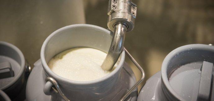 Artykuł: Koronawirus z Chin wpływa na branżę mleczarską w regionie