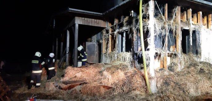 Artykuł: W jeden dzień stracili wszystko. Zrzutka na remont spalonego domu dla rodziny ze Stawigudy