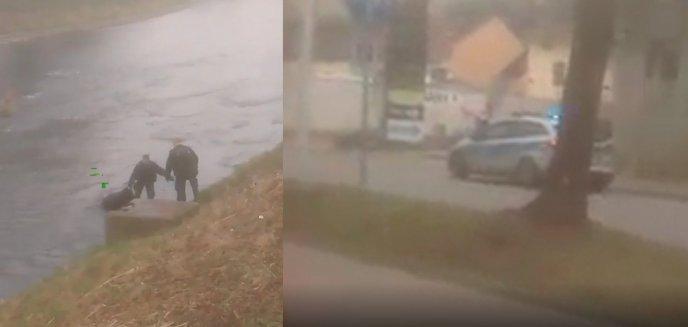 Co za wstyd! 52-letni mieszkaniec Olsztyna wybrał się wpław przez rzekę do... Czech po alkohol [WIDEO]