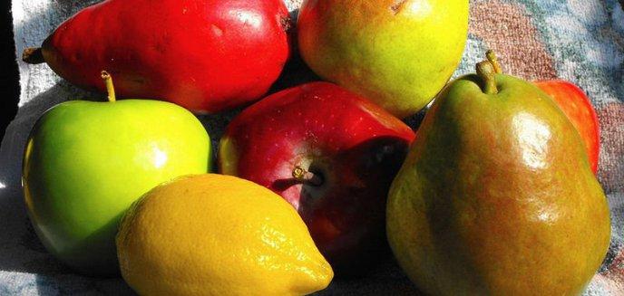 Artykuł: Zdrowe odżywanie może być dobrą zabawą