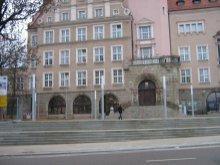 Sieć szerokopasmowa dla Olsztyna